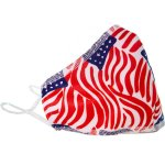 CLEANITSUPPLY.com All American Adjustable Ear Loop Two-layer Fabric Mask (CISMASK-AA)