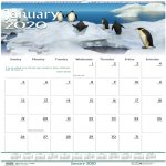 House of Doolittle Wildlife Scenes Monthly Wall Calendar, 2020 (HOD3731)
