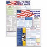 advantus-statefederal-legally-required-multi-colored-poster-24-x-30-avt83905
