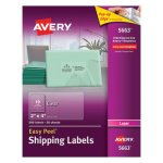 Avery 5663 Easy Peel Clear Shipping Labels, 2 x 4, 500 Labels (AVE5663)
