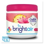 Bright Air Odor Eliminator, Nectar & Pineapple, 6 Fresheners (BRI900114CT)