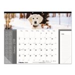brownline-pets-collection-monthly-desk-pad-22-x-17-dogs-2020-redc194116