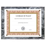 nu-dell-award-plaque-document-holder-acrylic-plastic-10-1-2-x-13-nud18815m