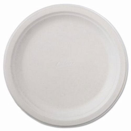 Chinet Classic Paper Plate 9-3/4  dia White 500 Plates (HUH21232)  sc 1 st  CleanItSupply.com & Chinet Classic 9-3/4