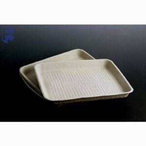 "Huhtamaki/Chinet Factor Strongholder Carry Food Tray - 7"" X 9"" X 1"" - Beige Tray (4/125), 500/Case (FOR-2179)"