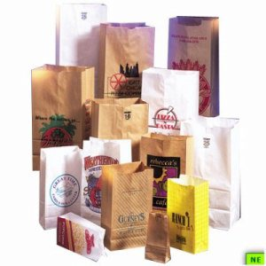 Duro 5# White Grocery Bag, 500/cs, 30 lb. BW, 5#, (SHR-DUR82512)