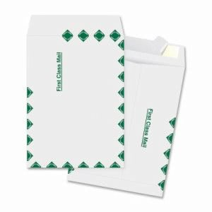 "Business Source Catalog Envelopes, 1st Class, 10""x15"", 100/BX, White (BSN65861)"