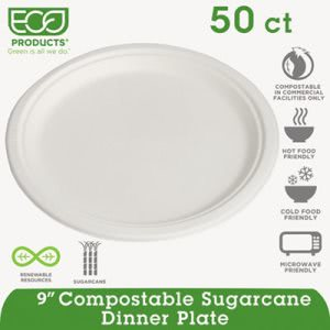"Eco-products Sugarcane 9"" Plates, White, 500 Plates (ECOEPP013PKCT)"