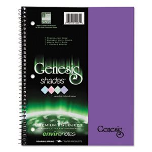 Roaring Spring One-Subject Notebook, College Rule, Purple, 34 Sheets (ROA12243)