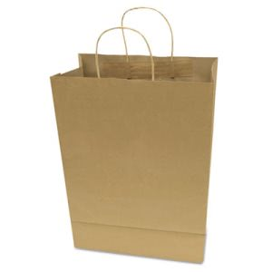 Cosco Premium Small Brown Paper Shopping Bag, 50/Box (COS091565)