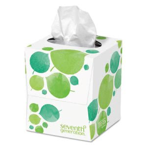 Seventh Generation Recycled 2-Ply Facial Tissues, 85 Tissues  (SEV13719EA)