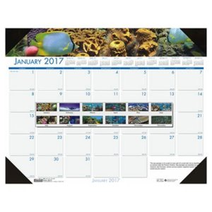 House of Doolittle Sea Life Photographic Monthly Desk Pad Calendar, 22 x 17, 2017 (HOD193)