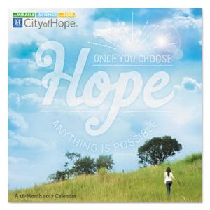 At-A-Glance Day Dream City Of Hope Wall Calendar, 2018-2018 (AAGDDW12528)