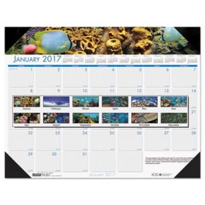 Sea Life Photographic Monthly Desk Pad 2017 Calendar, 18 1/2 x 13 (HOD1936)
