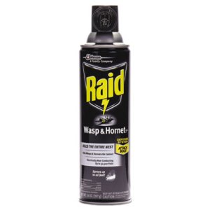 Raid Wasp & Hornet Killer, 14-oz. Aerosol Can, 1 Each (SJN668006EA)