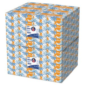 Kleenex White Facial Tissue, 2-Ply, White, 100/Box, 60 Boxes (KCC13216)