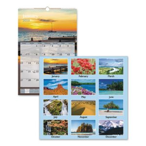 "At-A-Glance Scenic Monthly Wall Calendar, 15 1/2"" x 22 3/4"", 2021 (AAGDMW20128)"