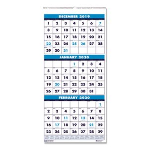 Doolittle Three-Month Format Wall Calendar, 14-Month, 8 x 17, 2020 (HOD3646)